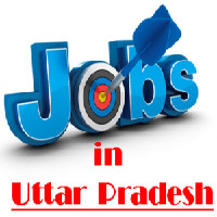 UPPCL Office Assistant Recruitment